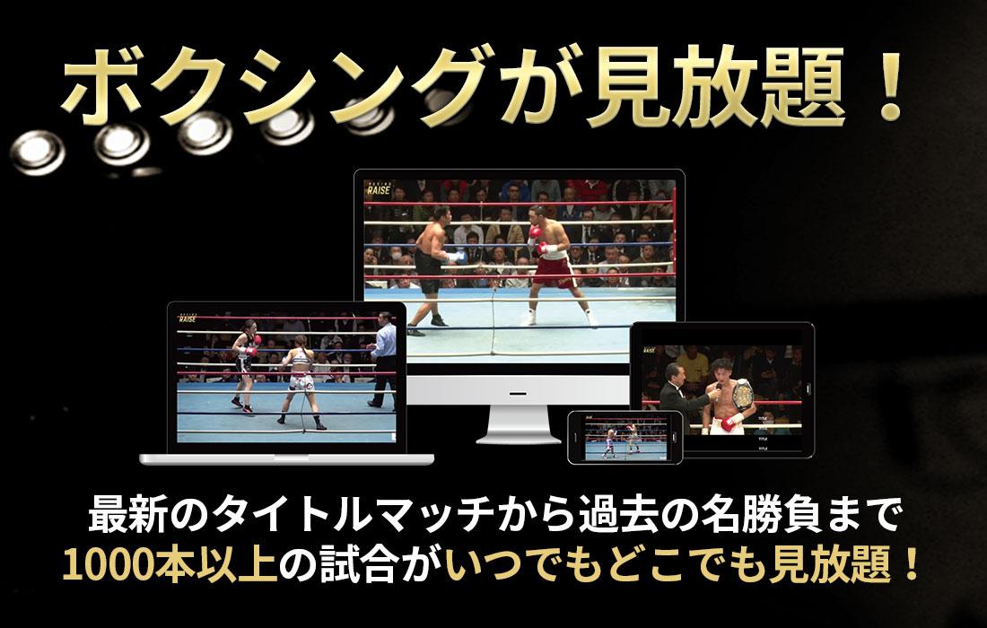 ボクシング 動画