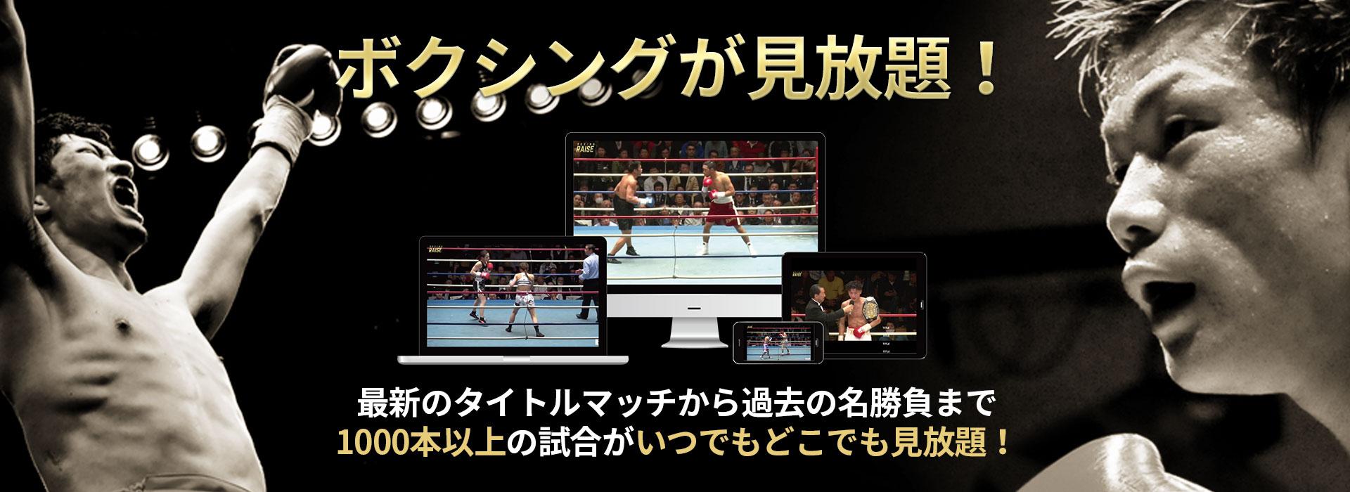 プロボクシングを身近にするボクシング動画配信サービス