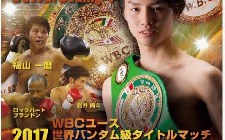 Art of Boxing.4